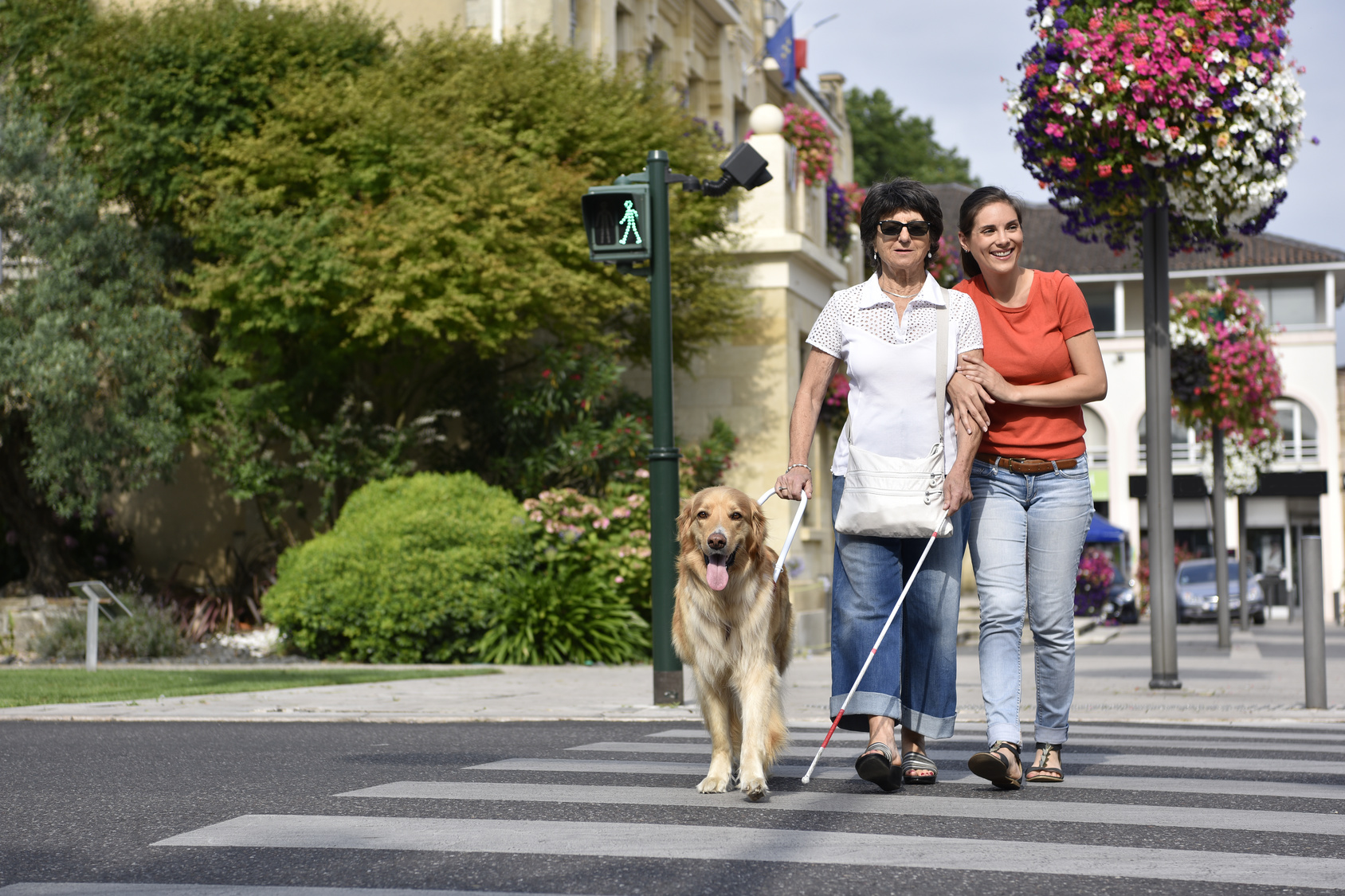 Dog Walking Exeter